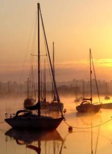 CO32 in de (ochtend?) mist